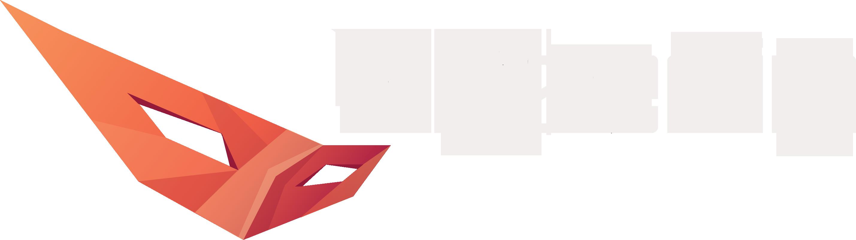 Webmaster Ninja